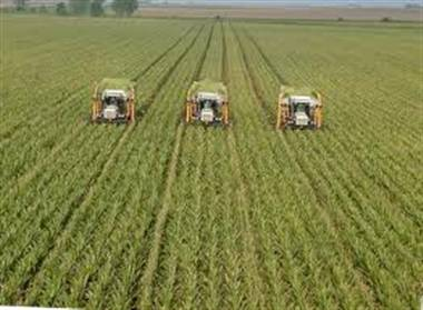 union budget2013 : price hike will get effected by agriculture growth