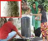 मान्यता है कि इस मंदिर के पोखरे में स्नान करने से कुष्ठ रोग ठीक हो जाता है