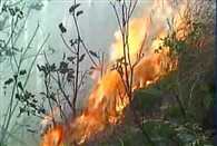 Fire broke out in some areas of Rajouri forest division in Jammu and Kashmir