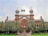 Lahore high court ordered to post mortem of cat