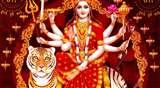 नवरात्र महोत्सव के साथ यहां पर रामनवमी भी मुख्य रूप से मनाई जाती है
