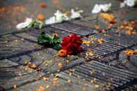 American blogger killed by instruction of al-Qaeda