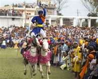 Why is celebrated in Punjab Hola-Mahalla