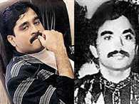 Dawood Ibrahim and his deputy and most trusted aide Chhota Shakeel do not wish to return to India anymore