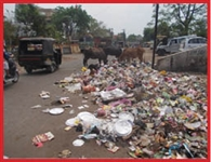 garbage in road