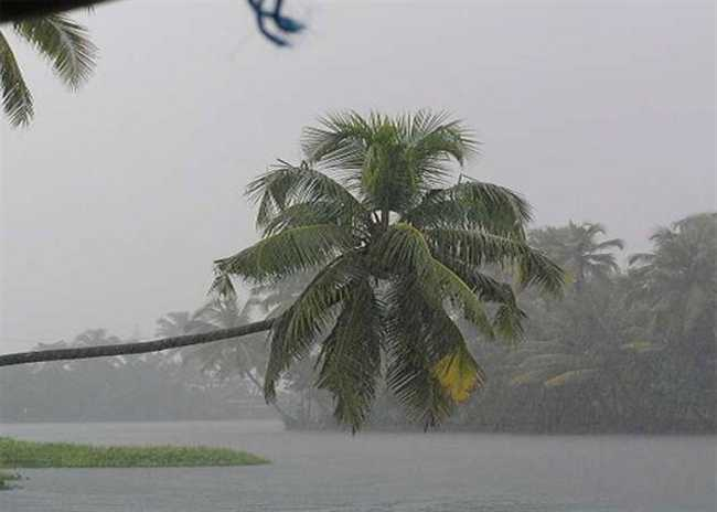 monsoon ,Kerala ,Harsh Vardhan ,Sabha ,question hour ,Jagran news,मई अंत,केरल,मॉनसून,बारिश,उम्मीद