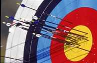 no more support of tata to Archery Association of India