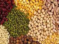 pulses price to come down after import