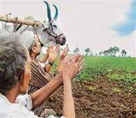 Number of drought-hit villages 16 128