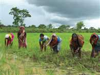 UP-Bihar is on the back foot  into the agricultural loan