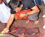 महेंद्र सिंह धौनी फिर से पहुंचे अपने पसंदीदा मंदिर, फैंस लगा रहे कयास