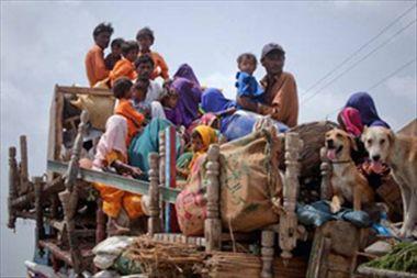 'Pak Hindu pilgrims do not intend to return back from India'