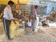 farmers face potato seed shortage and hike price