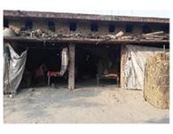 हृदय विदारक घटना के बाद सदमें में गांव