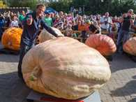 World's Heaviest Pumpkin
