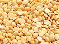 Centre to sell imported tur dal for curb sky high price of pulses