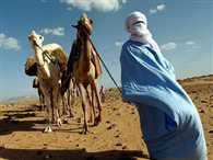 culture of tuareg people of Niger