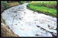 भूजल बचाने को अब गांवों में लगेंगी पानी पंचायत
