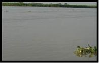 गंगा का जलस्तर बढ़ने से बढ़ी बेचैनी