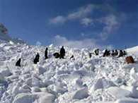 The bodies of the Siachen martyrs will be sent to Delhi today