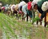 जाने क्यों लगान नहीं देते गोंडा के सात गांवों के किसान