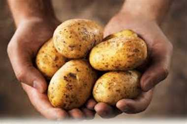 first time india will import potato