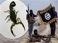 ISIS made the scorpions Weapons
