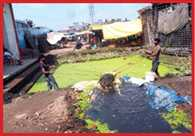 cleaning of mela field starts