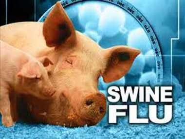 how to avoid swine flu