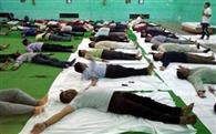 अधिकारियों ने किया योग का पूर्वाभ्यास