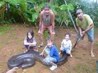 17 feet long anaconda Placed in the bathtub