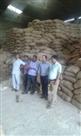 राहुल इंडस्ट्रीज केगोदाम पर छापा, 8.5 हजार ¨क्वटल चावल जब्त