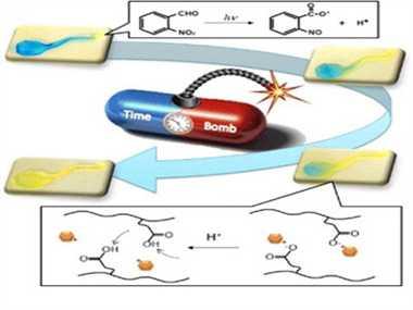 Hydrogels: smart materials for drug delivery