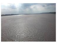 12 घंटे में दो मीटर बढ़ा यमुना का जलस्तर