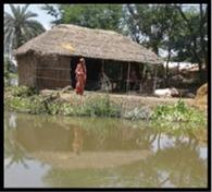 टापू बना गांव, बाढ़ से घिरे लोग