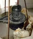 गंगा नगर का शिव मंदिर
