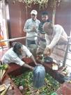 जीत की खबर सुन बाबा हरिहरनाथ मंदिर पहुंचे विधायक