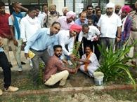 पर्यावरण संरक्षण के लिए युवा अवश्य लगाएं पौधा : घुबाया