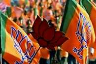 BJP Takes Control of 87 Civic Bodies in Rajasthan