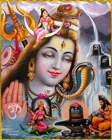 Maha Shivaratri devotees of Shiva worship is several times more fruit online hindi news