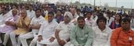 गौसेवा को जुटे 11 हजार छात्र, विश्व रिकार्ड