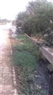 चिमनी गांव में पानी की निकासी नहीं होने पर परेशानी