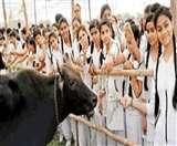 मेरठ में गौसेवा के लिए जुटे 11 हजार लोग, बनाया विश्व रिकार्ड