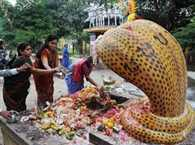 Rahu and Ketu in the poor condition of Naag Panchami big relief