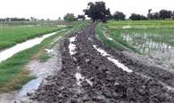 आजादी के बाद ग्रामीणों को नसीब नहीं हुई पक्की सड़क