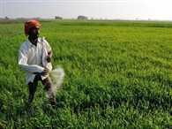 extra allocation for crop loan: parliamentary committee