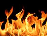 Three burnt in Honda showroom