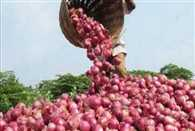 Farmer earns Re 1 after selling one tonne of onions!