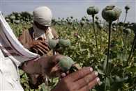 Eastern Uttar Pradesh a silk route for Bangladeshi drug peddlers