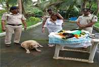 Retired police 26/11 dog Tiger passed away
